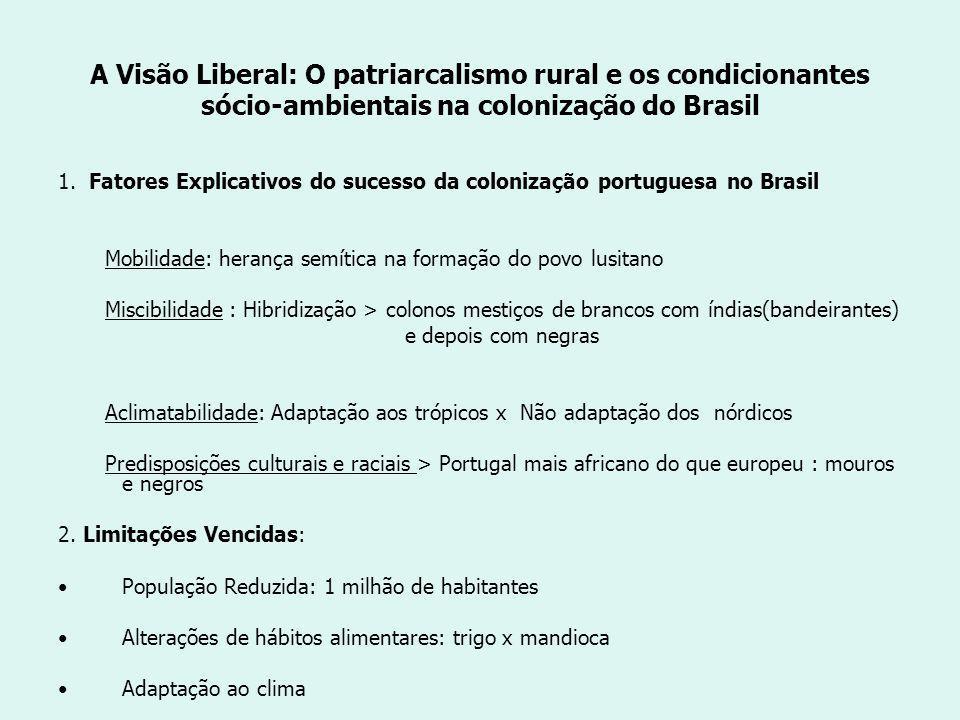 A Visão Liberal: O patriarcalismo rural e os condicionantes sócio-ambientais na colonização do Brasil