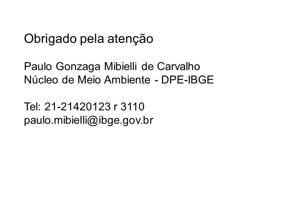 Obrigado pela atenção Paulo Gonzaga Mibielli de Carvalho