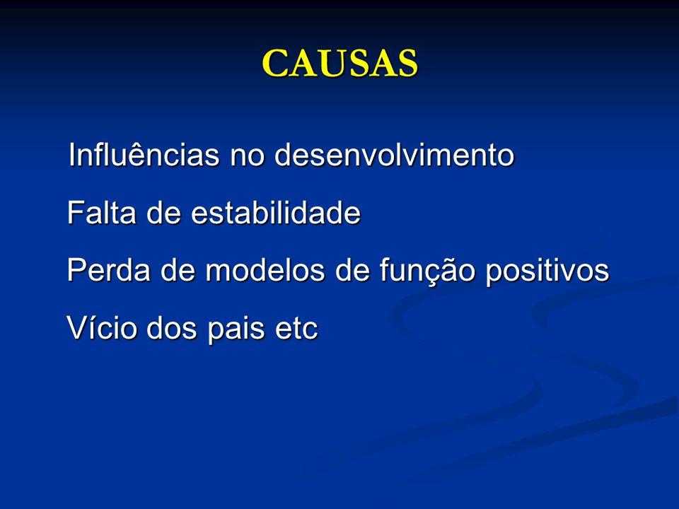 CAUSAS Influências no desenvolvimento Falta de estabilidade Perda de modelos de função positivos Vício dos pais etc.