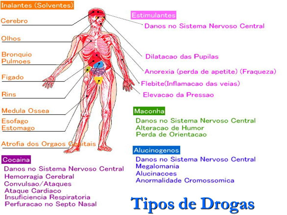 TIPOS DE DROGAS Tipos de Drogas