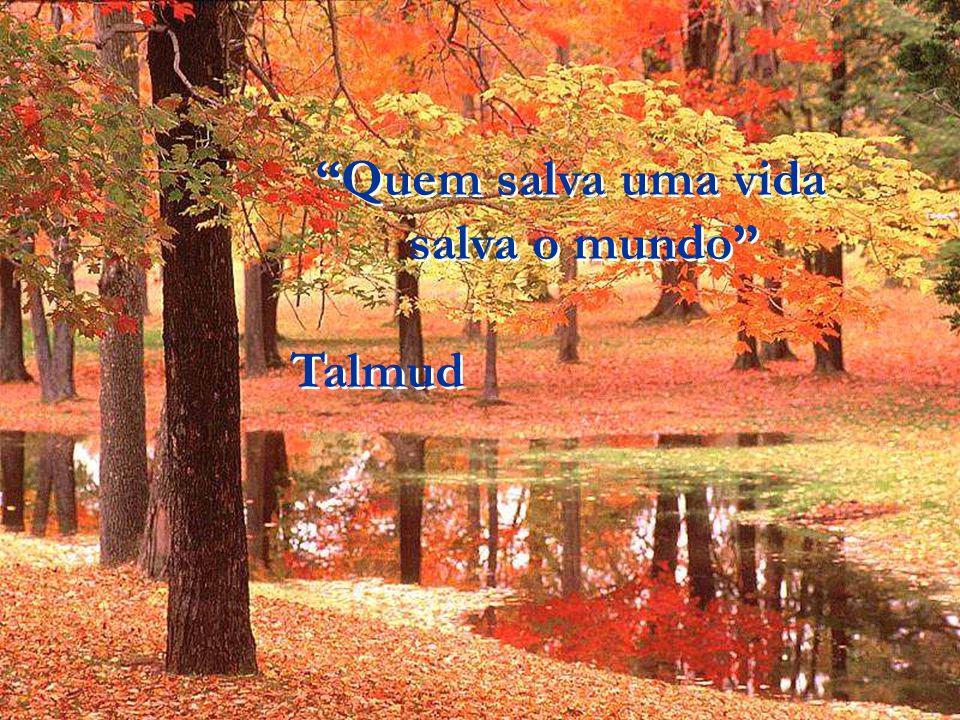 Quem salva uma vida salva o mundo Talmud
