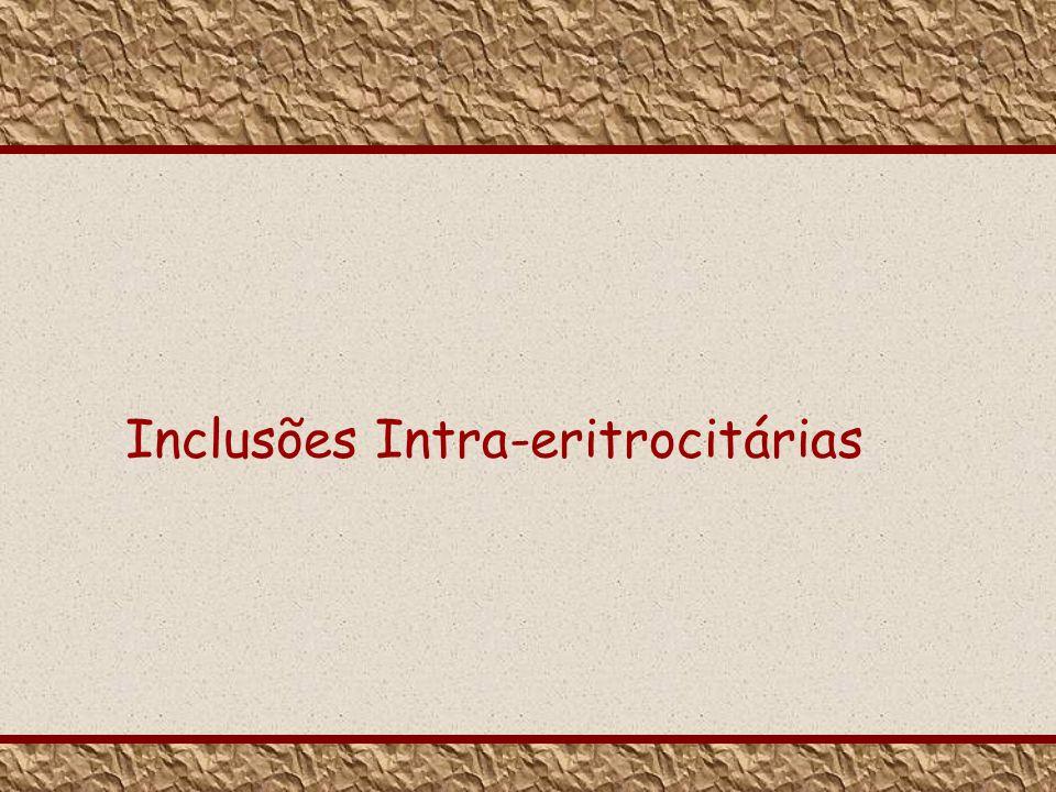 Inclusões Intra-eritrocitárias