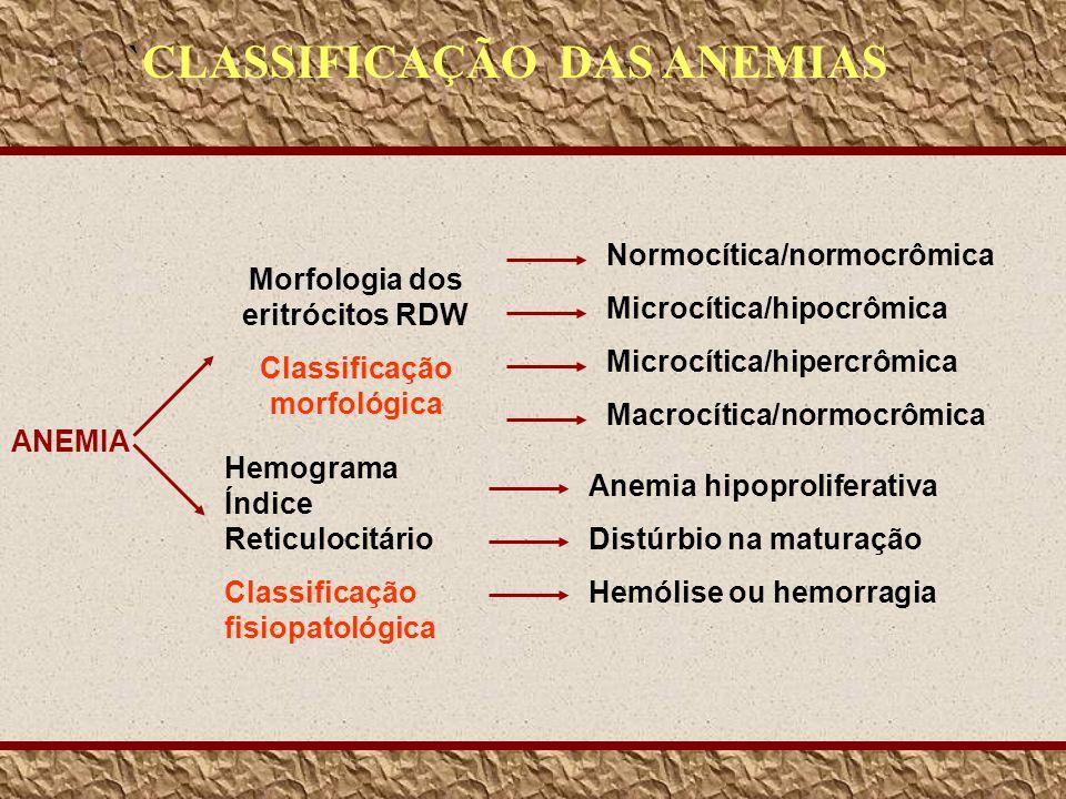 Morfologia dos eritrócitos RDW Classificação morfológica