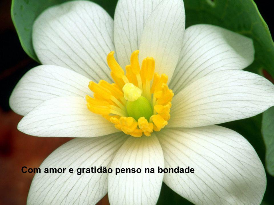 Com amor e gratidão penso na bondade