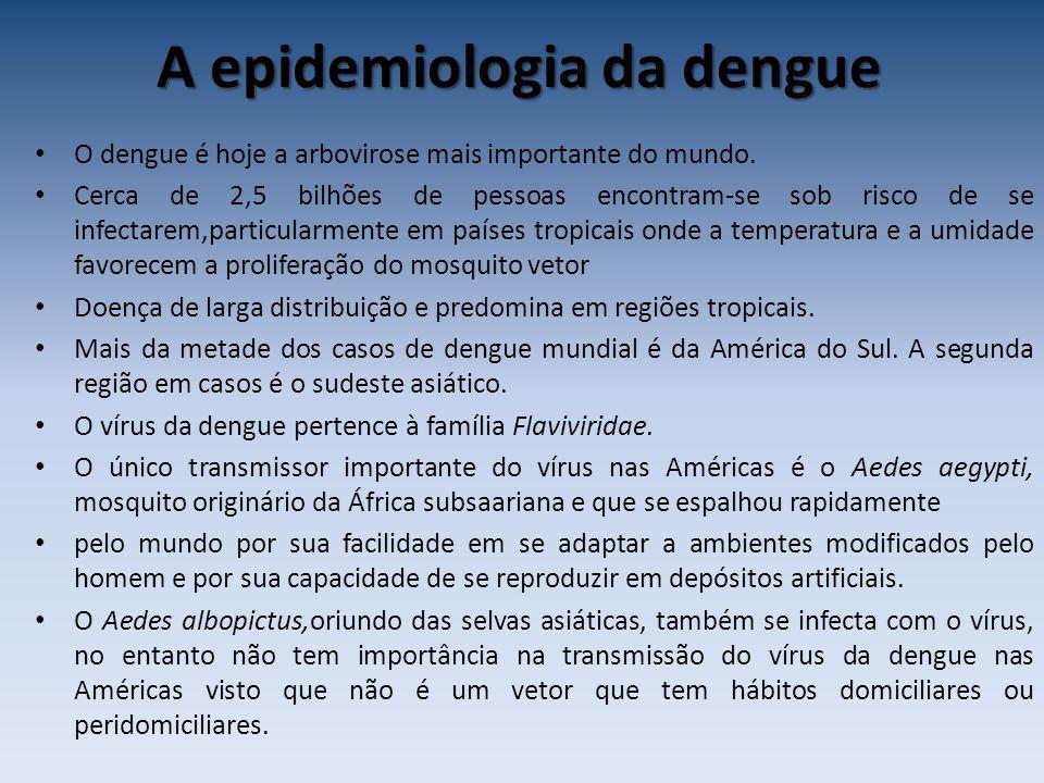 A epidemiologia da dengue