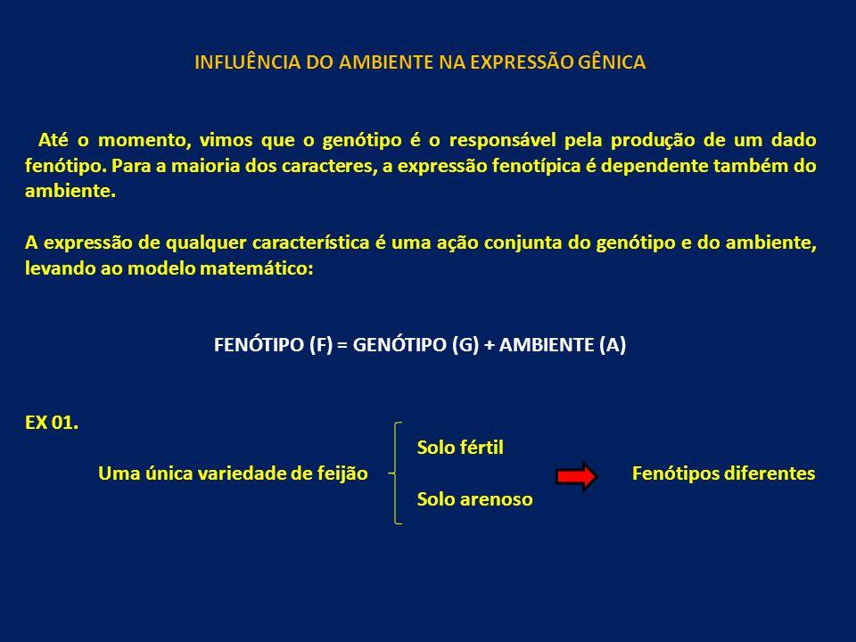 INFLUÊNCIA DO AMBIENTE NA EXPRESSÃO GÊNICA
