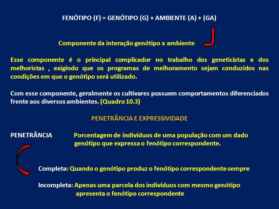 FENÓTIPO (F) = GENÓTIPO (G) + AMBIENTE (A) + (GA)