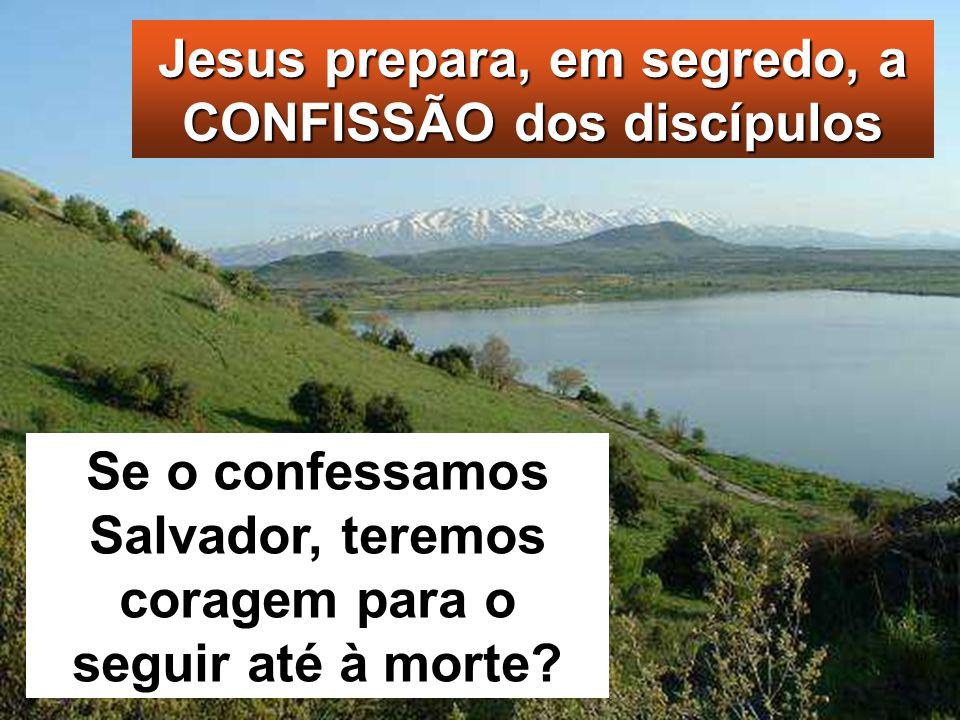Jesus prepara, em segredo, a CONFISSÃO dos discípulos