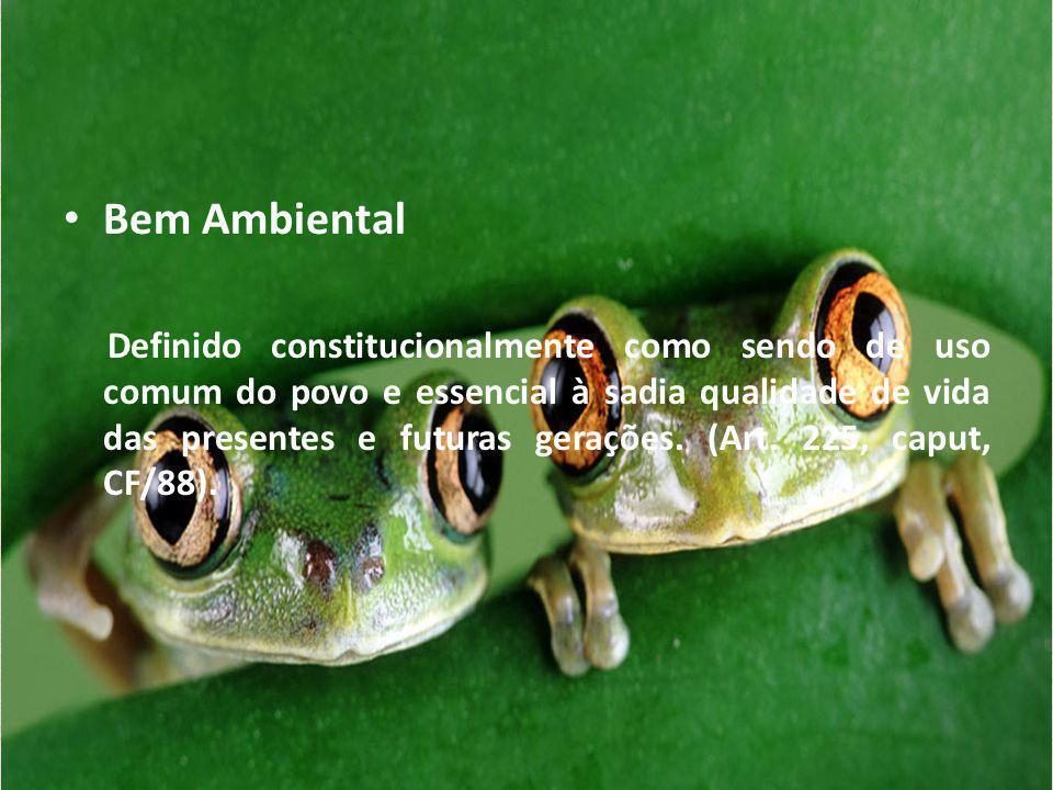 Bem Ambiental