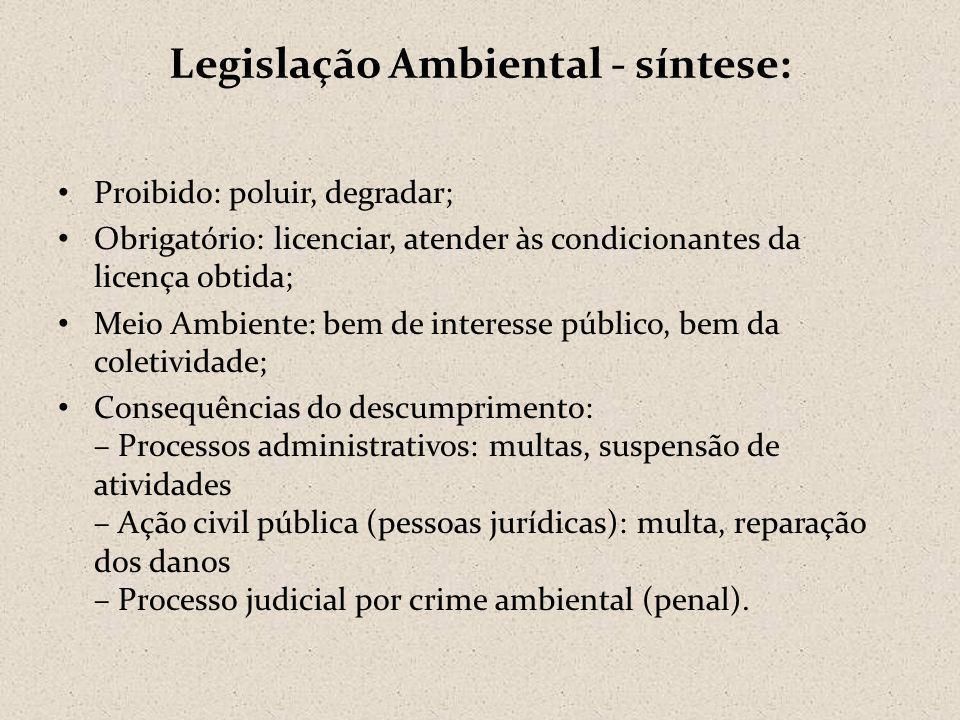 Legislação Ambiental - síntese: