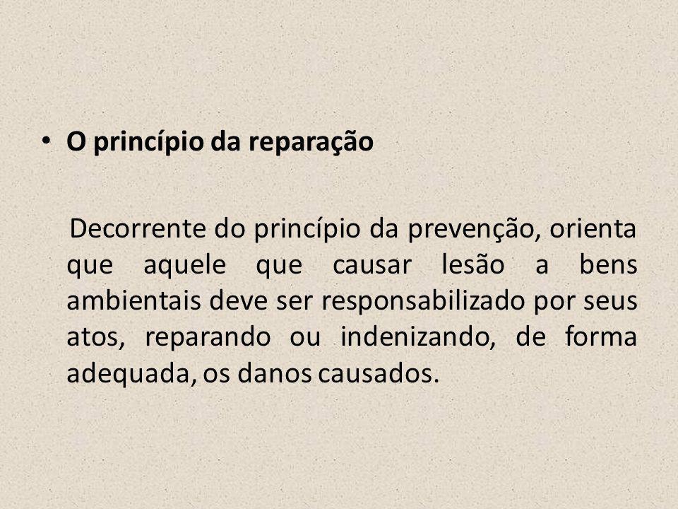 O princípio da reparação
