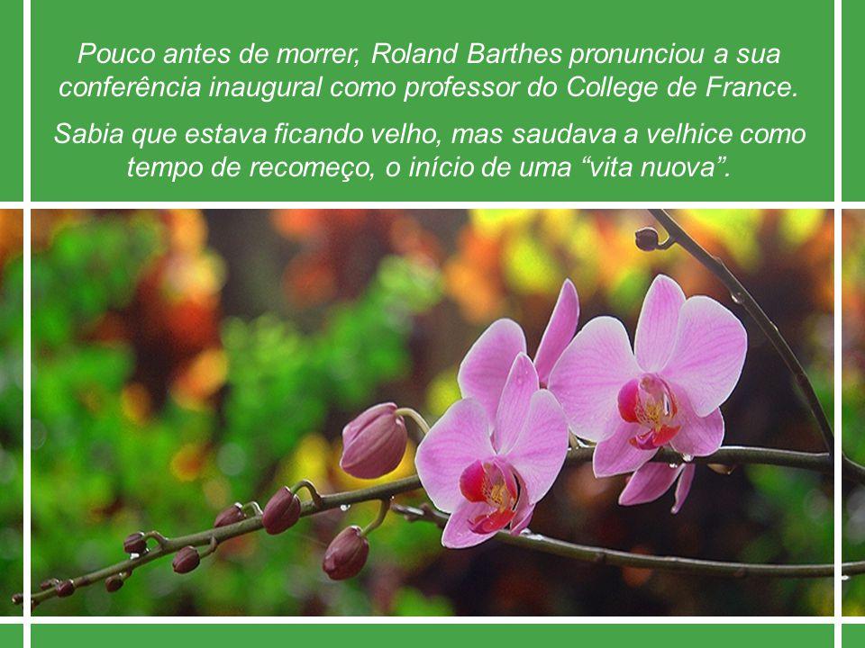 Pouco antes de morrer, Roland Barthes pronunciou a sua conferência inaugural como professor do College de France.