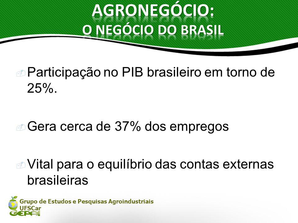 AGRONEGÓCIO: O NEGÓCIO DO BRASIL
