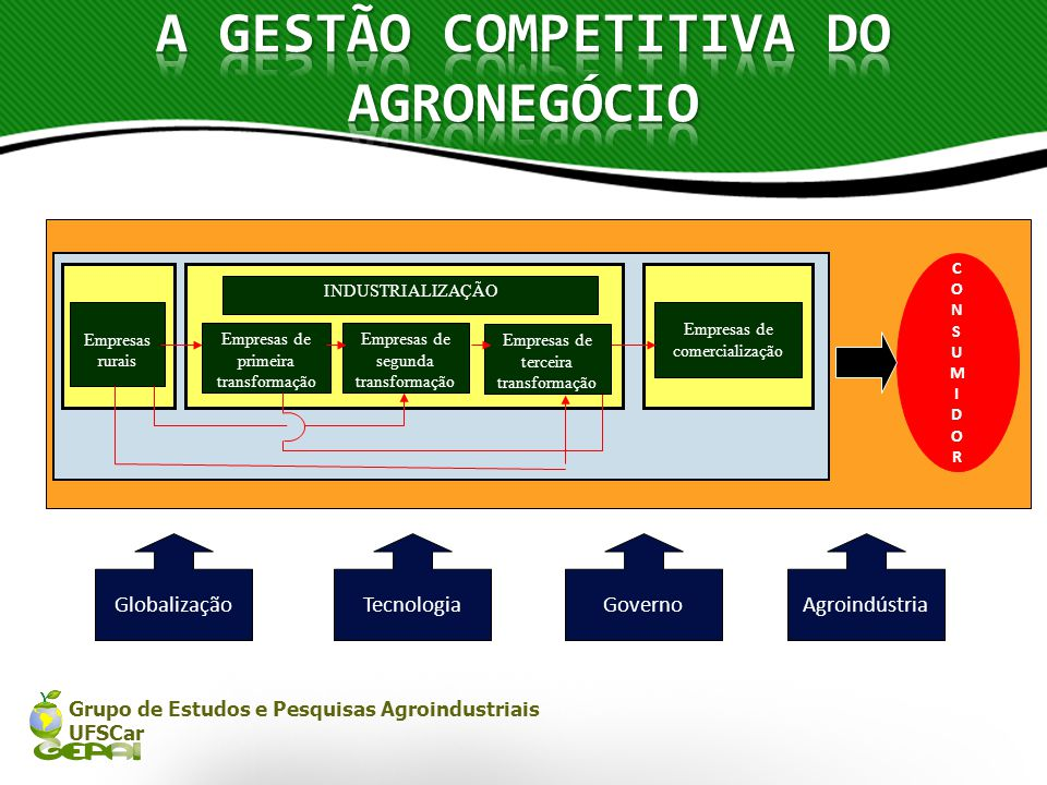 A GESTÃO COMPETITIVA DO AGRONEGÓCIO