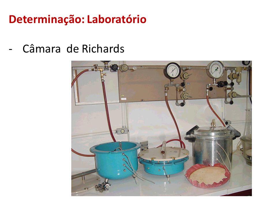 Determinação: Laboratório