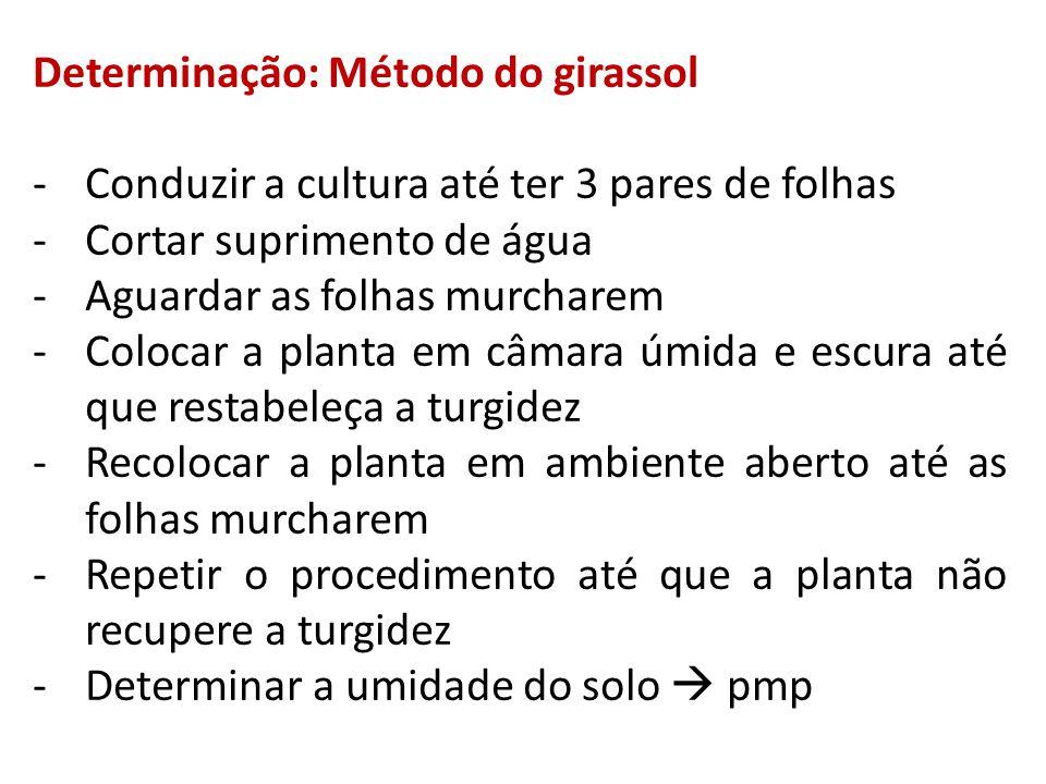 Determinação: Método do girassol