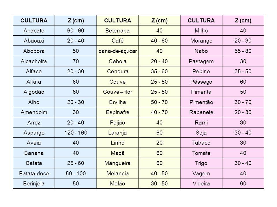 CULTURA Z (cm) Abacate. 60 - 90. Beterraba. 40. Milho. Abacaxi. 20 - 40. Café. 40 - 60. Morango.
