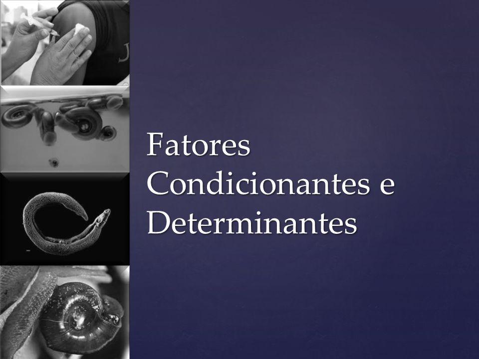 Fatores Condicionantes e Determinantes
