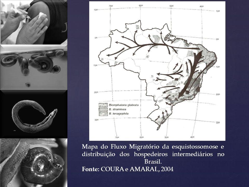 Mapa do Fluxo Migratório da esquistossomose e distribuição dos hospedeiros intermediários no Brasil.