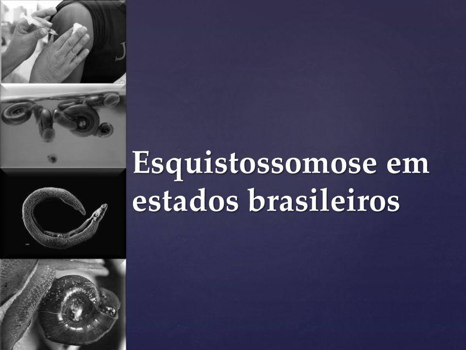Esquistossomose em estados brasileiros