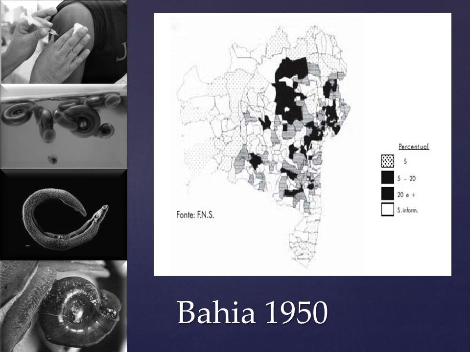 Bahia 1950