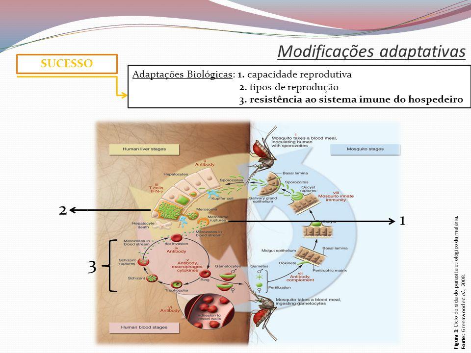 Modificações adaptativas