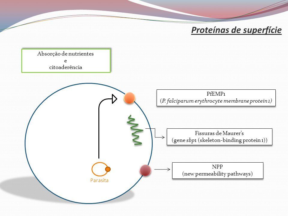 Proteínas de superfície