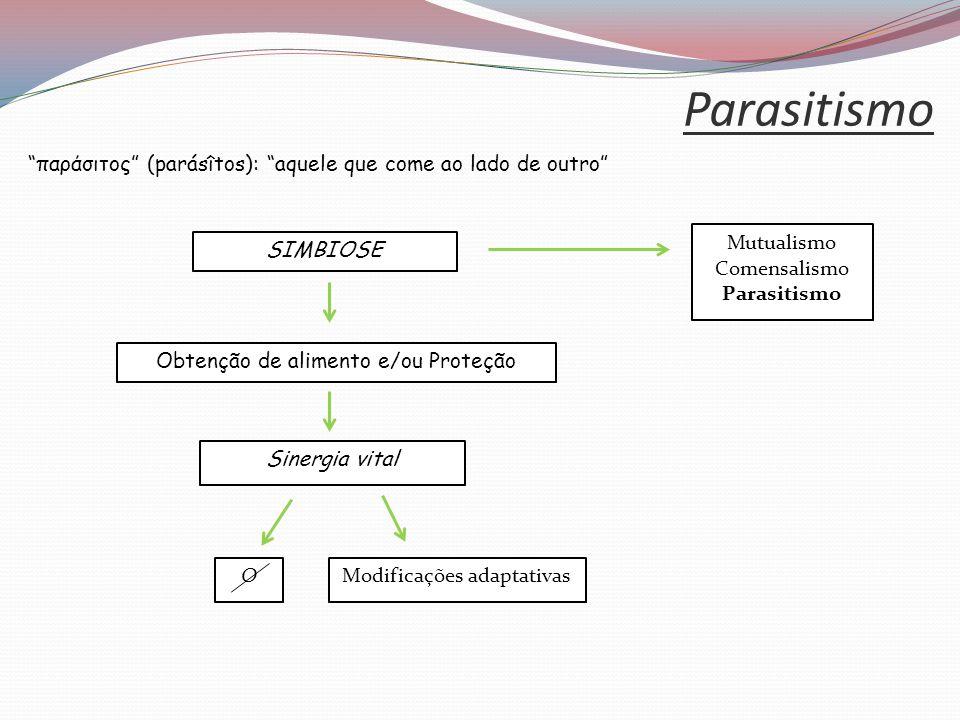 Parasitismo παράσιτος (parásîtos): aquele que come ao lado de outro Obtenção de alimento e/ou Proteção.