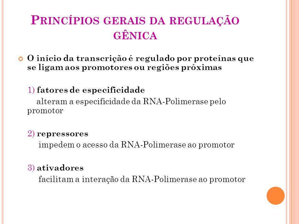 Princípios gerais da regulação gênica
