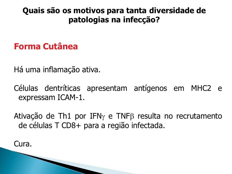 Quais são os motivos para tanta diversidade de patologias na infecção