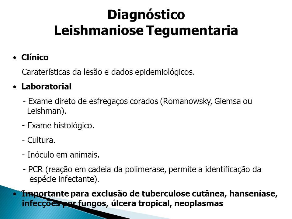 Leishmaniose Tegumentaria
