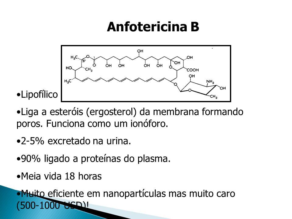 Anfotericina B Lipofílico