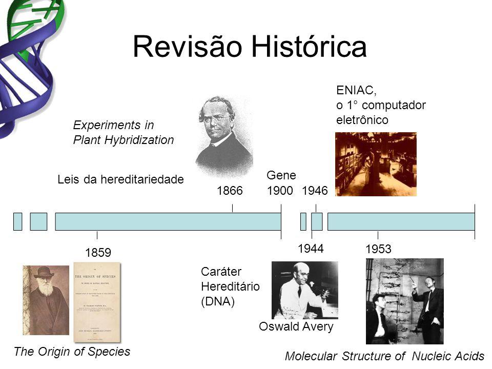Revisão Histórica ENIAC, o 1° computador eletrônico Experiments in