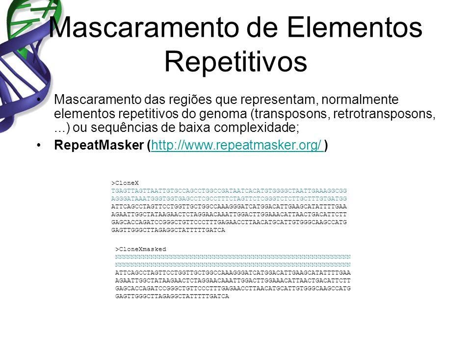 Mascaramento de Elementos Repetitivos