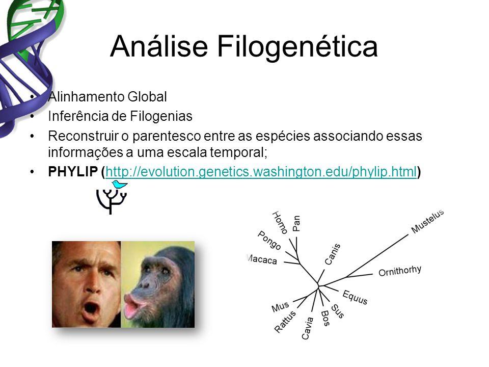 Análise Filogenética Alinhamento Global Inferência de Filogenias