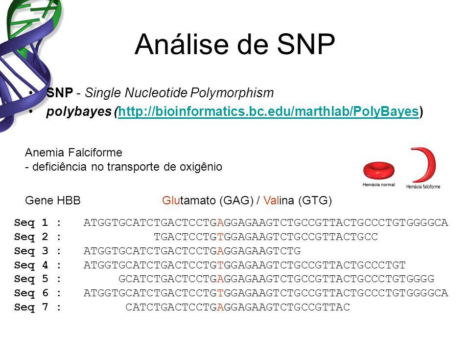 Análise de SNP SNP - Single Nucleotide Polymorphism