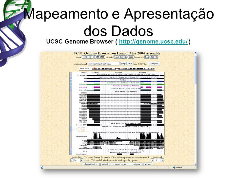 Mapeamento e Apresentação dos Dados