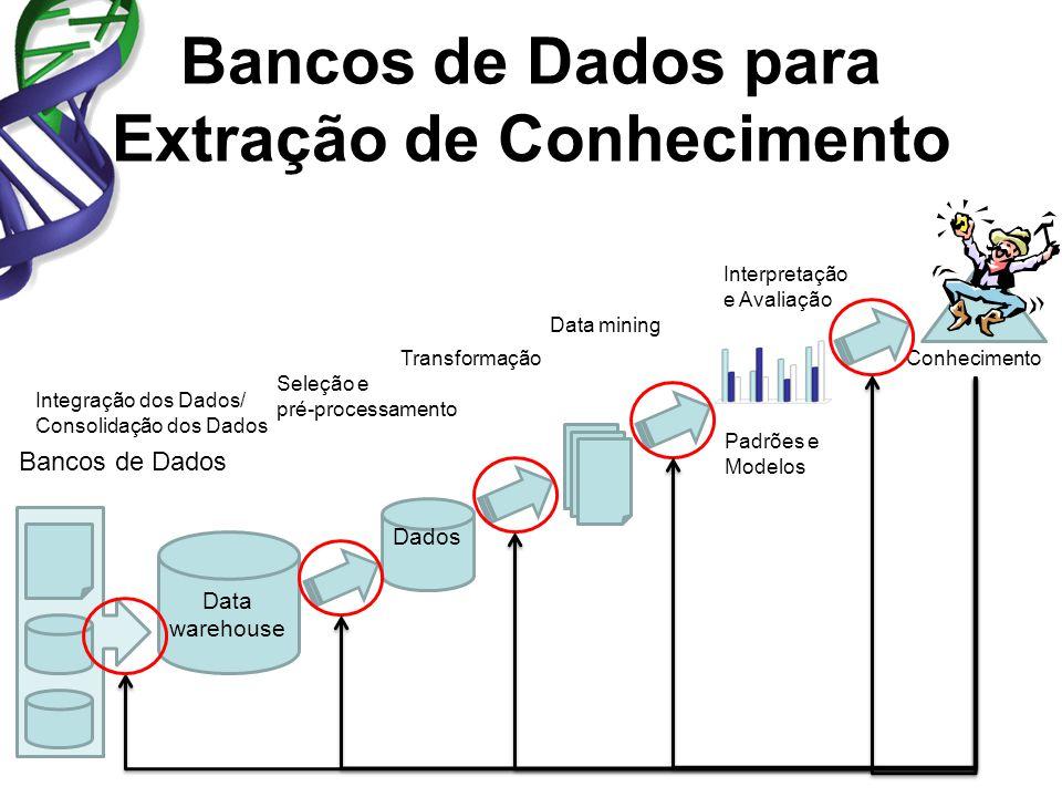 Bancos de Dados para Extração de Conhecimento