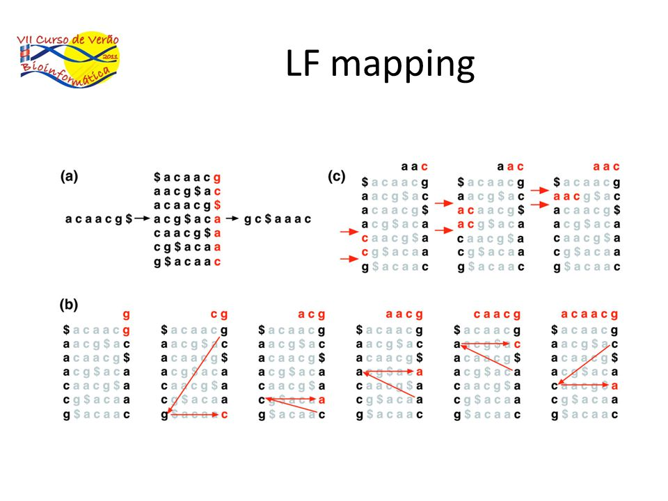 LF mapping