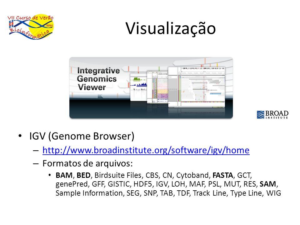 Visualização IGV (Genome Browser)