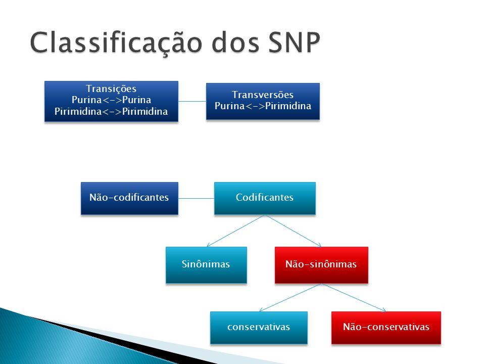 Classificação dos SNP Transições Purina<->Purina
