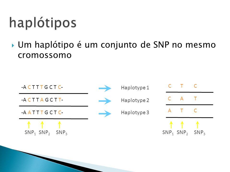 haplótipos Um haplótipo é um conjunto de SNP no mesmo cromossomo