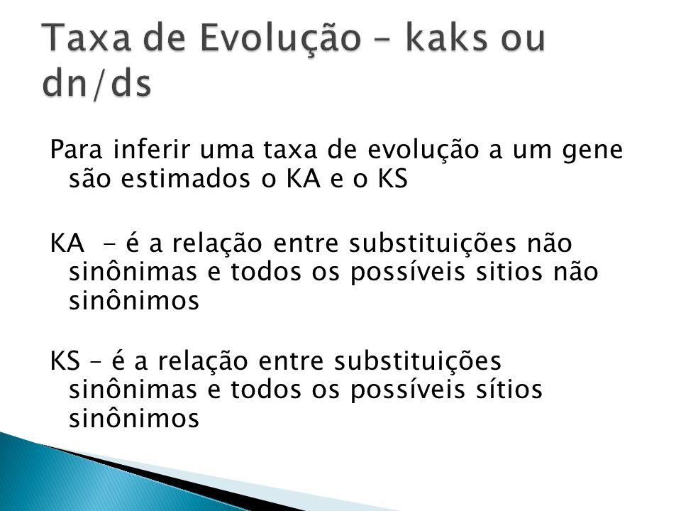 Taxa de Evolução – kaks ou dn/ds