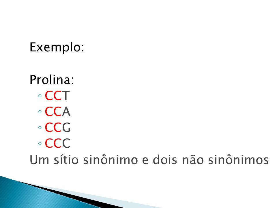 Exemplo: Prolina: CCT CCA CCG CCC Um sítio sinônimo e dois não sinônimos