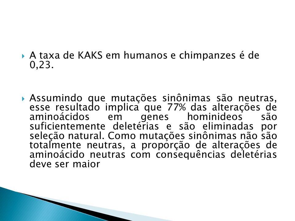 A taxa de KAKS em humanos e chimpanzes é de 0,23.