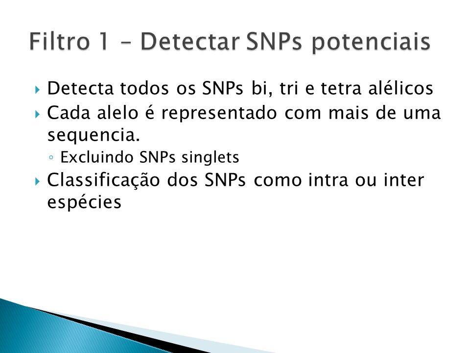 Filtro 1 – Detectar SNPs potenciais