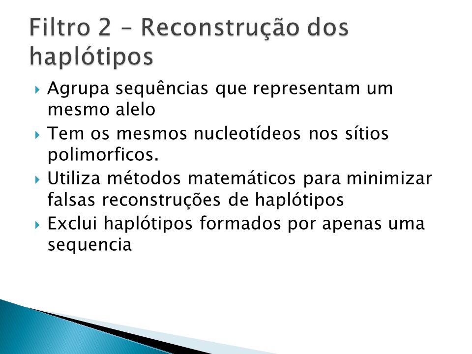Filtro 2 – Reconstrução dos haplótipos