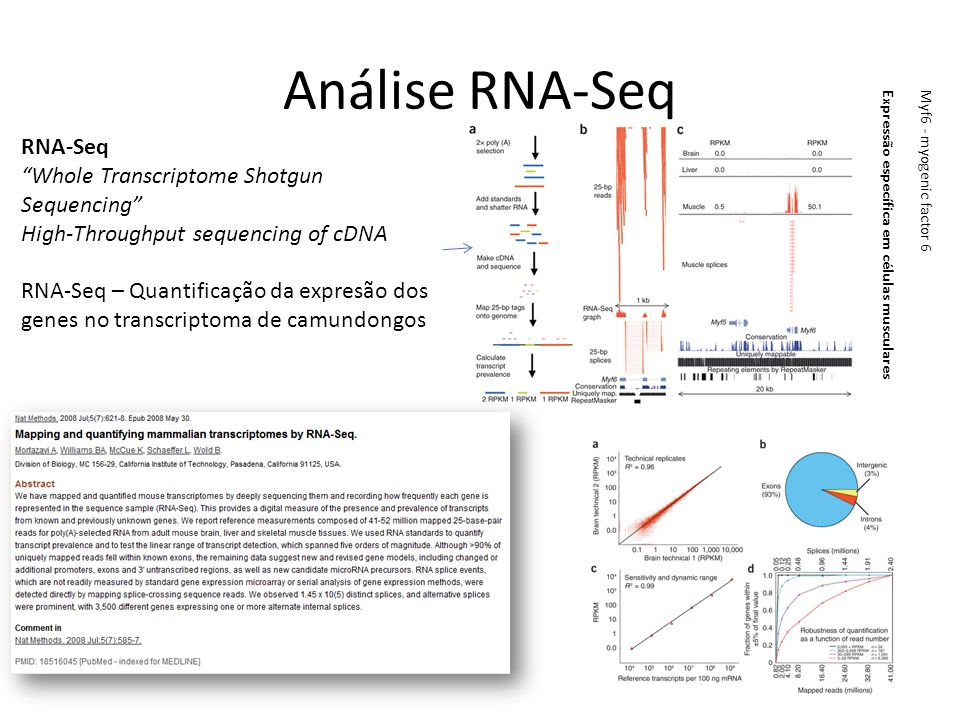 Análise RNA-Seq RNA-Seq Whole Transcriptome Shotgun Sequencing