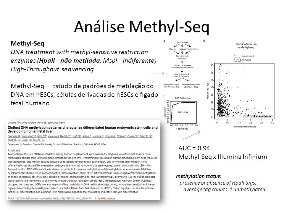 Análise Methyl-Seq Methyl-Seq