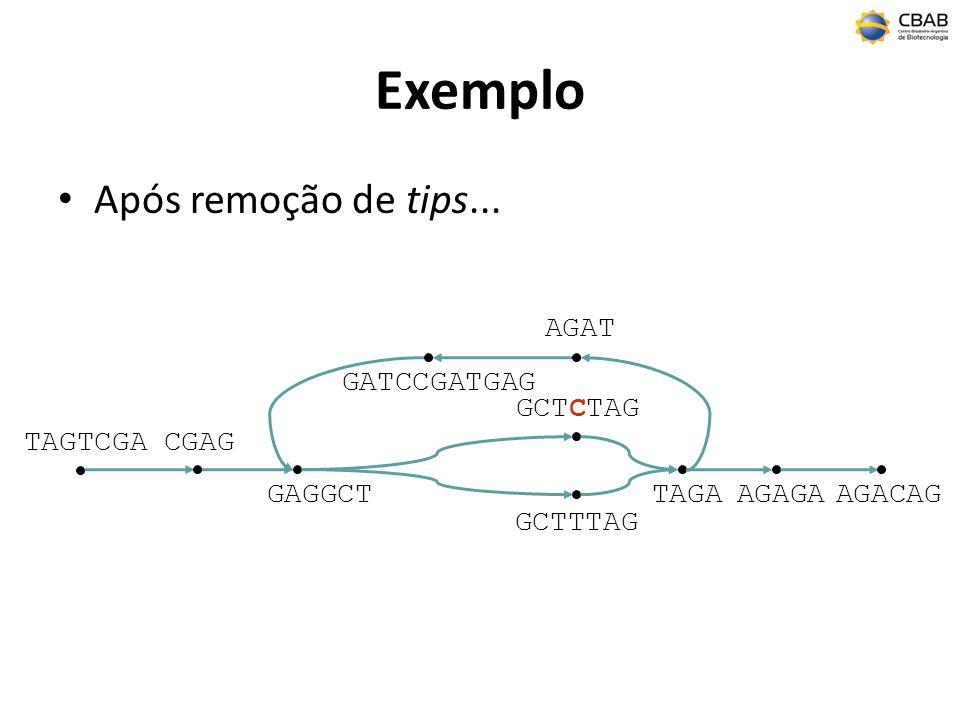 Exemplo Após remoção de tips... AGAT GATCCGATGAG GCTCTAG TAGTCGA CGAG